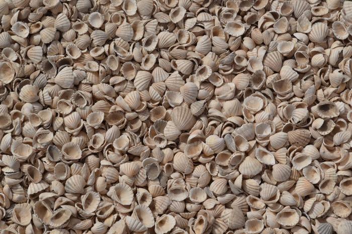 El suelo de Fadiouth