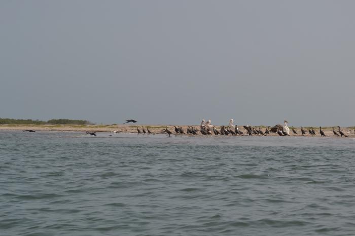 Point de Sangomar