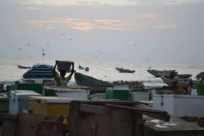 atardecer en Gambia