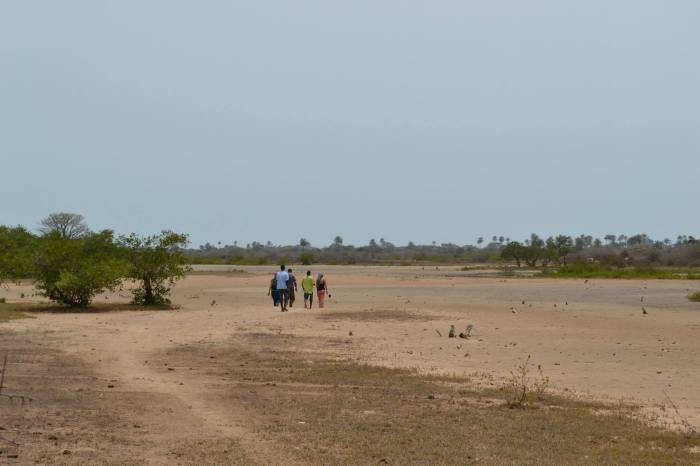 paisajes gambianos